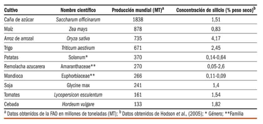 Fertilizantes y Abonos TradiRED - Porcentaje silicio en cultivos